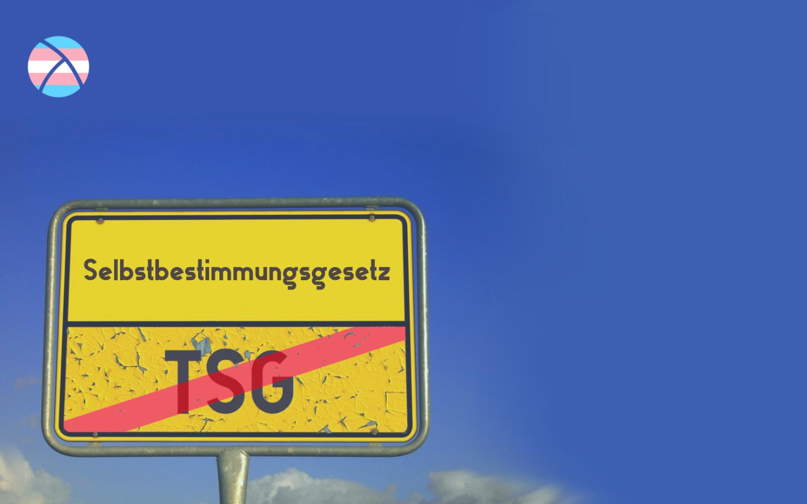Tschüss, TSG! E-Mail-Aktion des Referat Trans*
