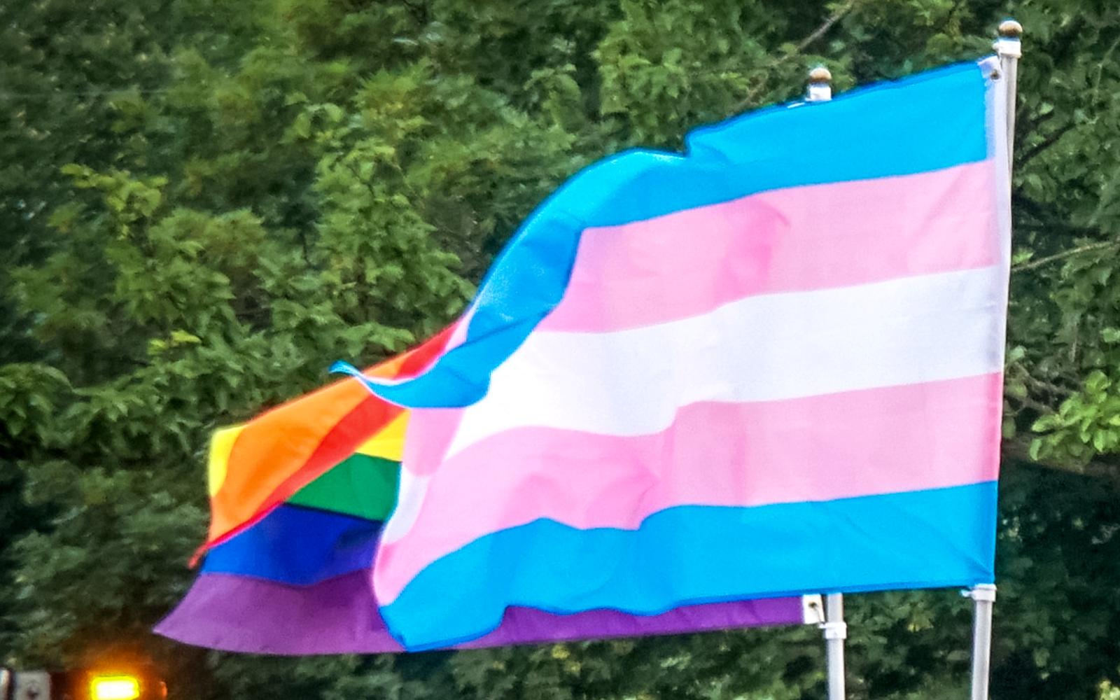 Treffen des Referats trans* August 2020